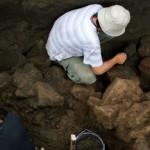 Ekskavasi Situs Bedingin